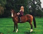 zdjęcia - konie