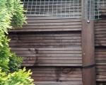 Zabezpieczenie ogrodu