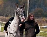 Hubertus 2011